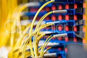 Netzwerk Switch Lichtwellenleiter LWL
