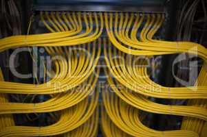 Netzwerk Lan Patchfeld
