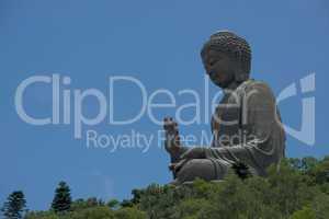 Big Buddha appearing to sit among trees