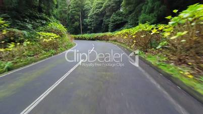 Fast Driving onto Curved Mountain Road on island Sao-Miguel, Azores