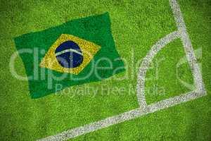 Brasil national flag