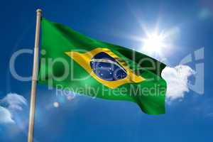 Brazil national flag on flagpole