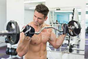 Shirtless focused bodybuilder lifting heavy barbell weight