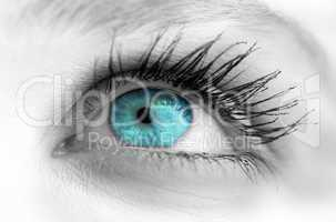 Blue eye on grey face
