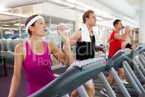 Row of people working out on treadmills