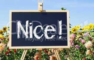 Nice !