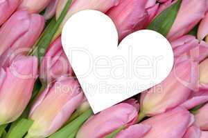 Tulpen Blumen mit Herz als Symbol der Liebe zum Muttertag oder V