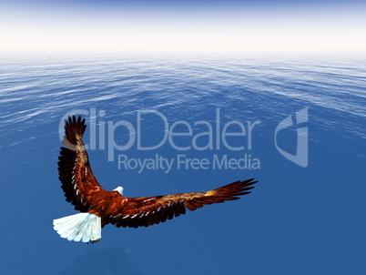 Eagle freedom - 3D render