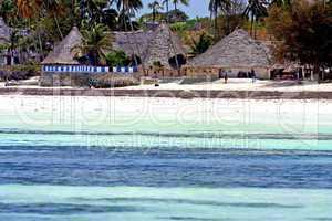 seaweed beach   in zanzibar  home  and sailing