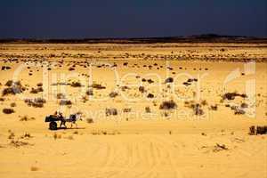 people in the desert of tunisia