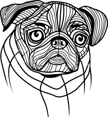 Dog pug head vector animal illustration for t-shirt. Sketch tattoo design.