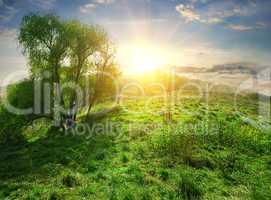 Sun over hill