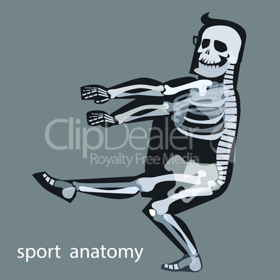 Skeleton anatomy sport male gymnastics