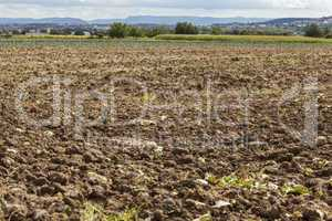 Harvested potato field with rotovated earth