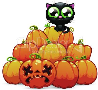A Heap of Halloween Pumpkins with a Black Cat on it