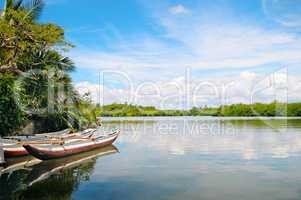 River, rainforest and pleasure boats
