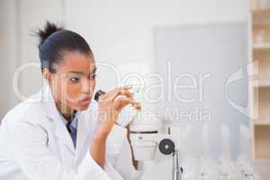 Scientist looking in microscope