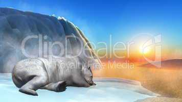 Polar bear - 3D render