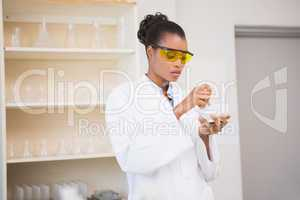 Concentrated scientist using pestle and mortar