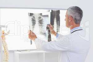 Concentrate doctor looking at X-Rays