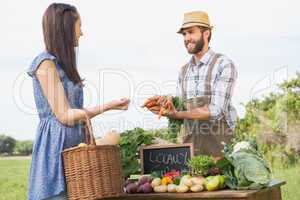 Farmer selling his organic produce