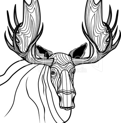 Moose head vector animal illustration for t-shirt. Sketch elk tattoo design.