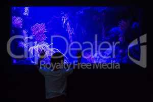 Young man touching an algae tank in a darkest room