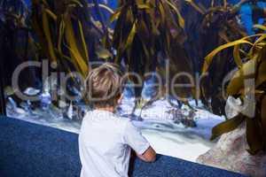 Young man looking at yellow algae