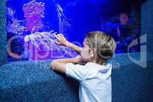 Young man touching an algae tank