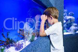 Young man focusing an algae in a tank