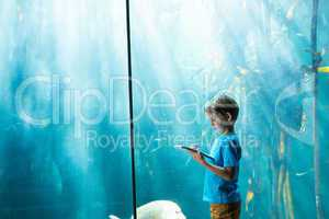 Young man drawing a fish in a tank