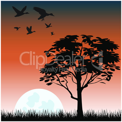 landscape with tree.eps