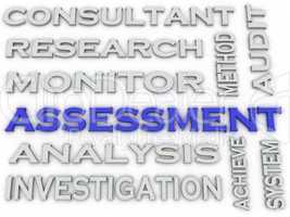 3d image Assessment  issues concept word cloud background