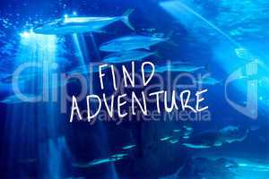 Composite image of find adventure