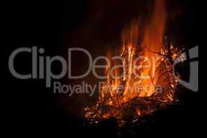 Alto Fire #1