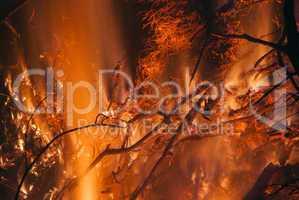 Alto Fire #7