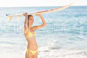 Pretty brunette holding surf board