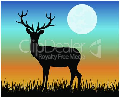 deer in the night.eps