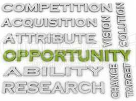 3d image Opportunity issues concept word cloud background