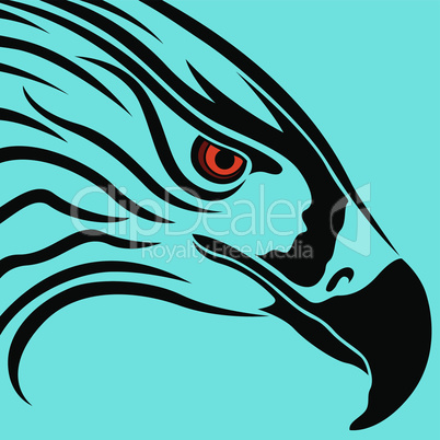 Head of eagle over blue
