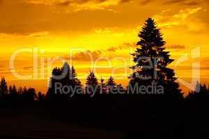 Wunderschöner Sonnenuntergang über dem Schwarzwald