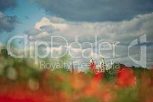 Feld mit Mohnblumen und Kaiserdem zu Speyer