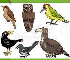 birds cartoon set illustration