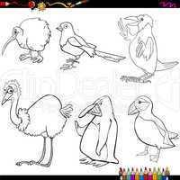 birds cartoon coloring page