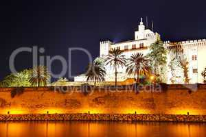 The night view on Cathedral of Santa Maria of Palma in Palma de
