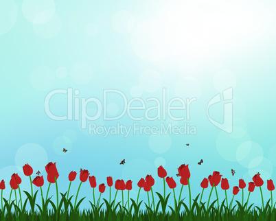 Meadow color