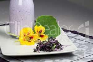 Fresh homemade yoghurt with garden herbs