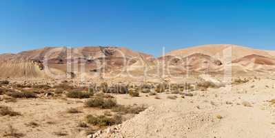 Desert landscape near the Large Crater (Makhtesh Gadol) in Israel's Negev desert