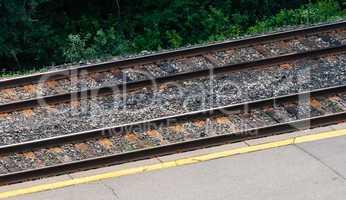 Pair of rail tracks by platform and shrubs