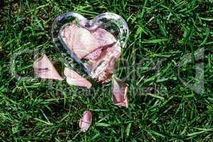 Glass heart with rose petals